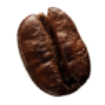coffee-beans-P4MXYZD5