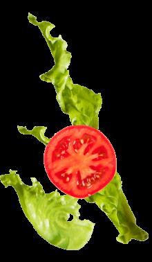 lettuce_tomato@2x-min